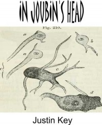 In Joubin's Head